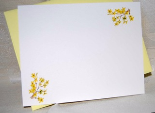 Yellow Forsythia Flat Correspondence Note Card Set (with original illustration)