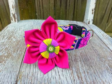 Dog Collar and Flower